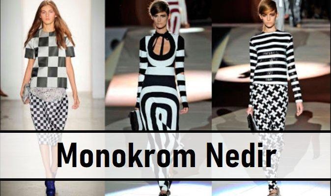 Monokrom Nedir | Monokrom Stil Nasıl Yapılır