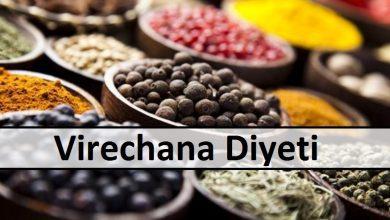 Virechana diet