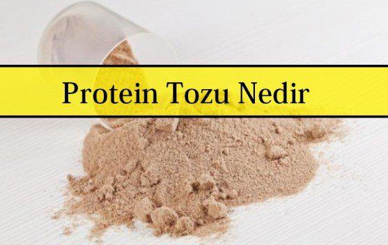 Protein Tozu Nedir