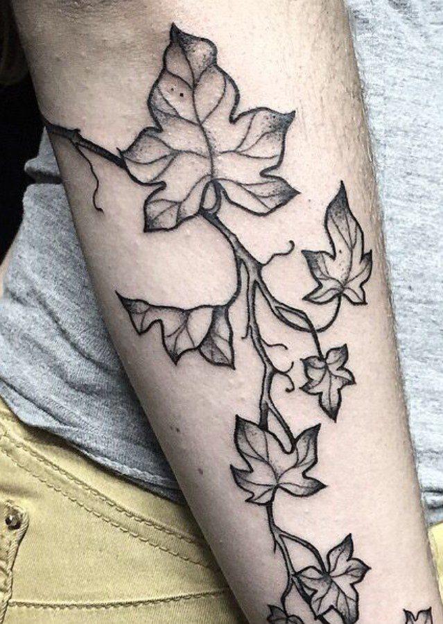 Kola Yapraklı Sarmaşık Dövme