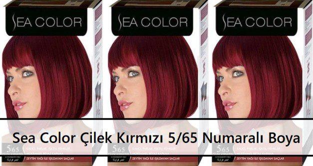Sea Color Çilek Kırmızı 565 Numaralı Boya