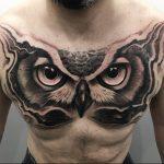 Komple Göğüs Baykuş Dövme Modelleri