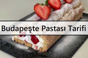 Budapeşte Pastası Tarifi | Budapeşte Roll Nasıl Yapılır