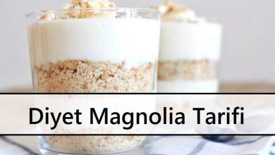 Diyet Magnolia Tarifi
