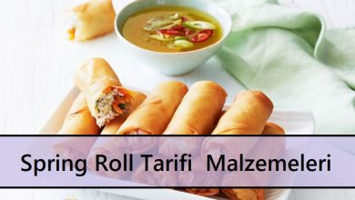 Spring Roll Tarifi Malzemeleri