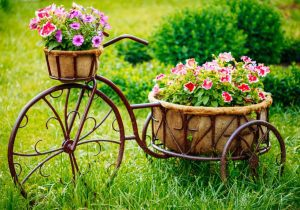 Bahçe Bisiklet Dekorasyon