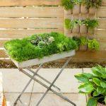Bahçe Izgara Saksı Modeli