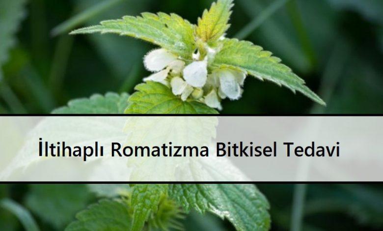 İltihaplı Romatizma Bitkisel Tedavi